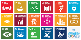 Teaching using the Sustainable Development Goals